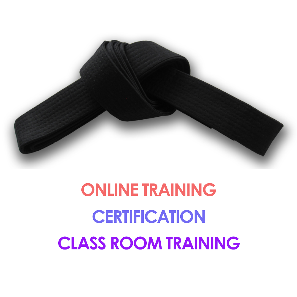 Lean Six Sigma Black Belt Blended Learning Six Sigma Training And Jobs