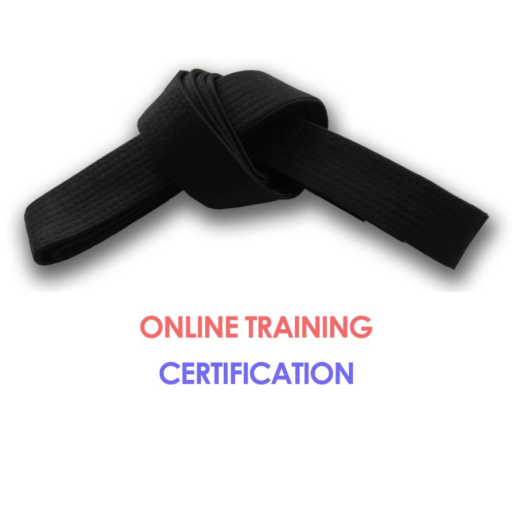 Lean Six Sigma Black Belt Online Training Certification Six