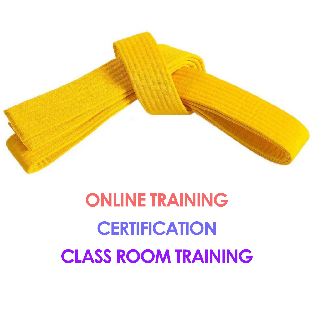 Lean Six Sigma Yellow Belt Blended Learning Six Sigma Training And