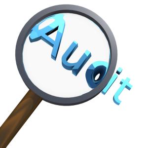 Lean Auditing