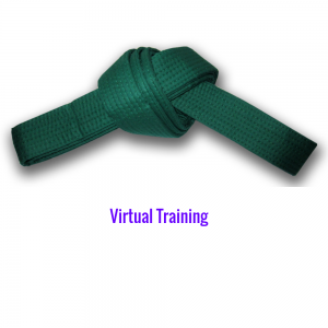 Lean Six Sigma Green Belt Instructor-Led Virtual Training
